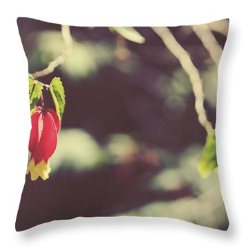 Separate Lives Throw Pillow by Laurie Search