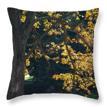 Throw Pillow featuring the photograph September Dreams by Joseph Yarbrough