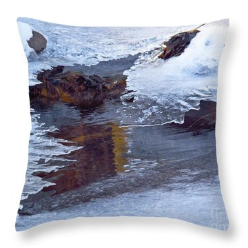 Serendipity In Ice  Throw Pillow