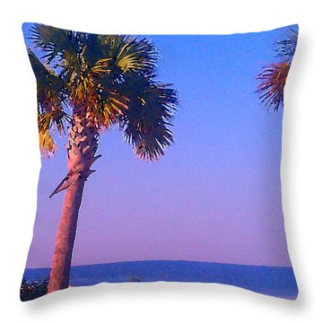 Throw Pillow featuring the photograph Serene by Brian Wright
