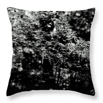 Throw Pillow featuring the photograph Serene by Jeanette C Landstrom