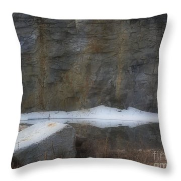 Serene Reflections In Spring Throw Pillow