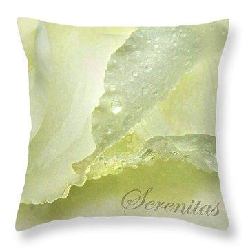 Throw Pillow featuring the photograph Serenitas by Deborah Smith