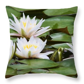 Serenity  Throw Pillow by Bruce Bley