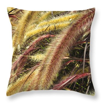 Setaria Italica Red Jewel - Red Bristle Grass Throw Pillow by Anne Mott