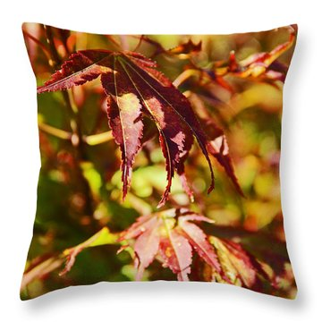 Shades Of Autumn Throw Pillow by Kerri Ligatich