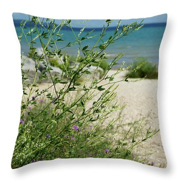 Throw Pillow featuring the photograph Shades Of Blue by Linda Shafer
