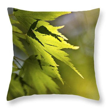 Shades Of Green And Gold. Throw Pillow by Clare Bambers