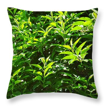 Shades Of Green Throw Pillow