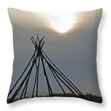 Shadow Dreams Throw Pillow by Pamela Patch