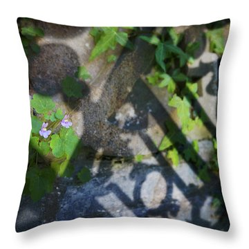 Throw Pillow featuring the photograph Shadow Garden by Richard Piper