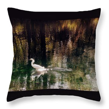 Throw Pillow featuring the photograph Shadowwaters by Lydia Holly