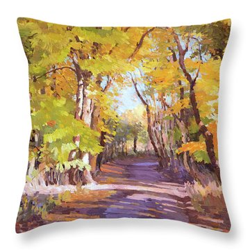 Shady Path At Fall In The Woods Throw Pillow