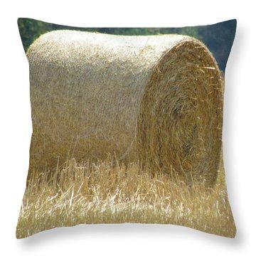 Shag Carpet Throw Pillow by France Laliberte