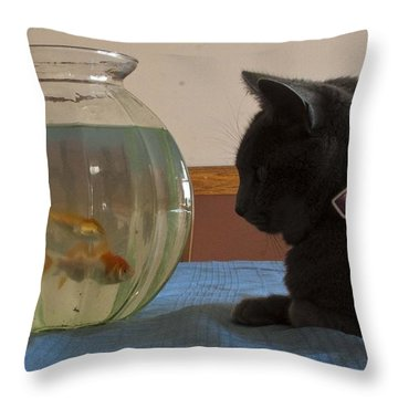 Throw Pillow featuring the photograph Shastacat by Darleen Stry