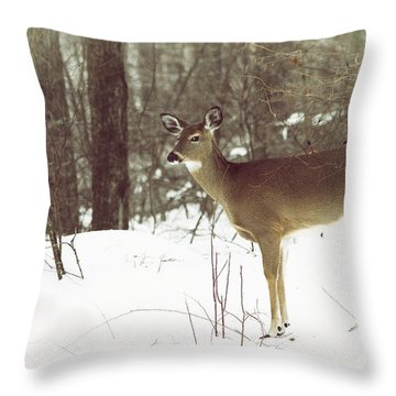 She Sees You Throw Pillow by Karol Livote