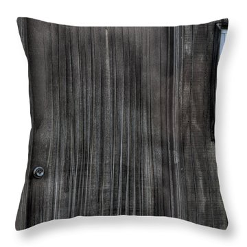 Shed Throw Pillow by Zawhaus Photography