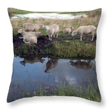 Sheep Throw Pillow by Vilas Malankar
