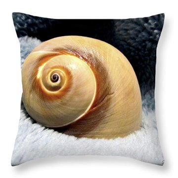 Throw Pillow featuring the photograph Shell One by Danielle  Parent