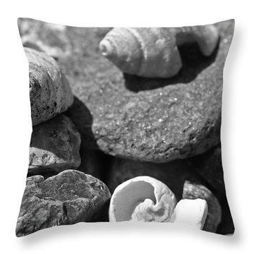 Shells I Throw Pillow by David Rucker