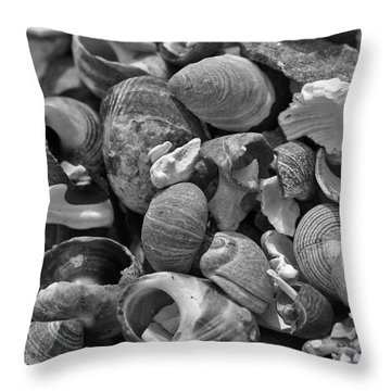 Shells V Throw Pillow by David Rucker