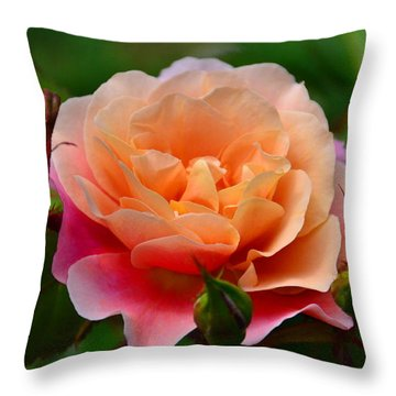 Sherbet Rose Throw Pillow