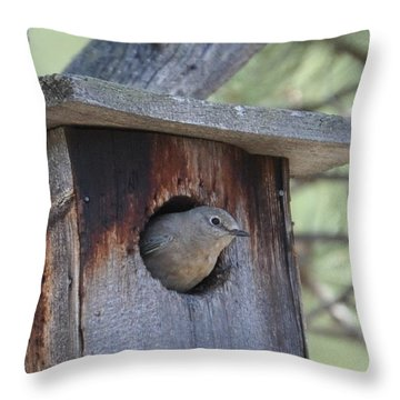She's Home Throw Pillow