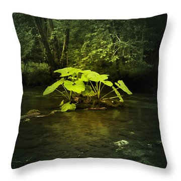 Shine On Me Throw Pillow by Svetlana Sewell