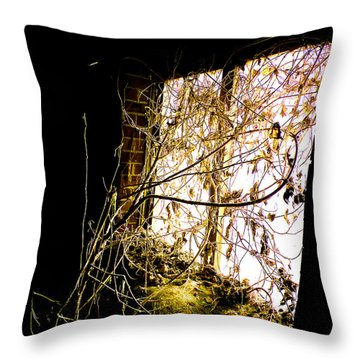 Shining In The Dark Throw Pillow