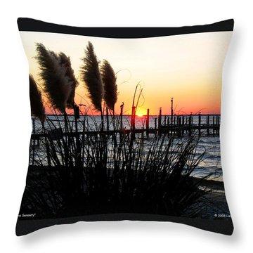 Shoreline Serenity Throw Pillow