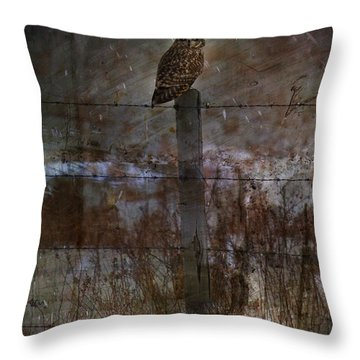 Short Eared Owl Throw Pillow by Empty Wall