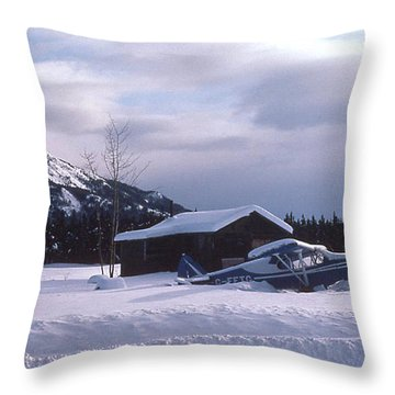 Anyone Got A Shovel? Throw Pillow by Mark Alan Perry