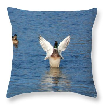 Throw Pillow featuring the photograph Showin Off by Mark McReynolds