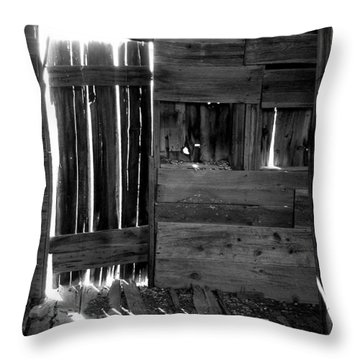 Throw Pillow featuring the photograph Shreds Of Yesterday by Vicki Pelham