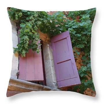Shutters And Grapevines Throw Pillow