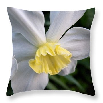 Shy Daffodil Throw Pillow