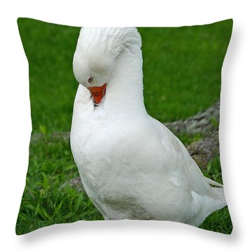 Throw Pillow featuring the photograph Shy Goose by Lisa Phillips
