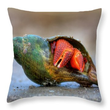 Shy Guy Throw Pillow by Jenny Ellen Photography