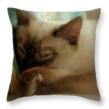 Siamese Beauty Throw Pillow by Caroline Stella