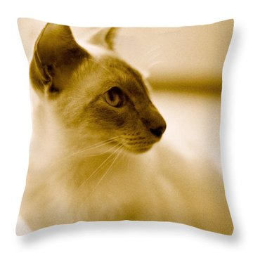 Siamese Feline Throw Pillow