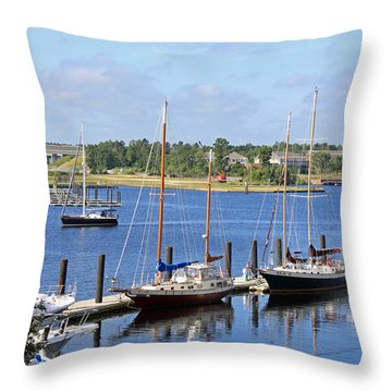 Side By Side IIi Throw Pillow by Suzanne Gaff