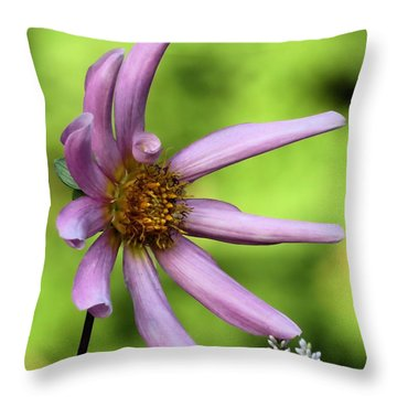 Sideways Throw Pillow by Janice Drew