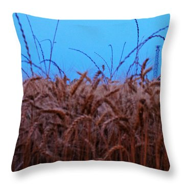 Sign Of The Times Throw Pillow by Lisa Holmgreen