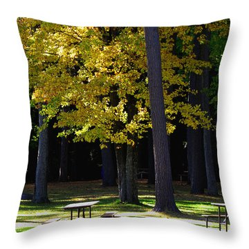 Silence In The Park Throw Pillow by Ms Judi