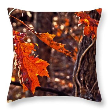 Throw Pillow featuring the photograph Silence Listening To Silence by William Fields
