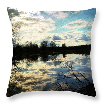 Silence Of Worms Throw Pillow by Jerry Cordeiro