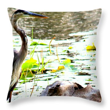 Throw Pillow featuring the photograph Silent Solitude by Kathy  White