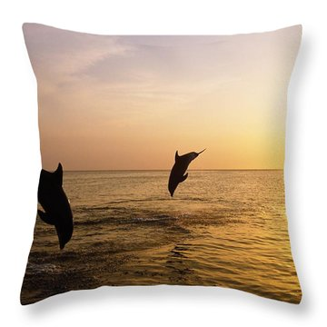 Silhouette Of Bottlenose Dolphins Throw Pillow by Natural Selection Craig Tuttle