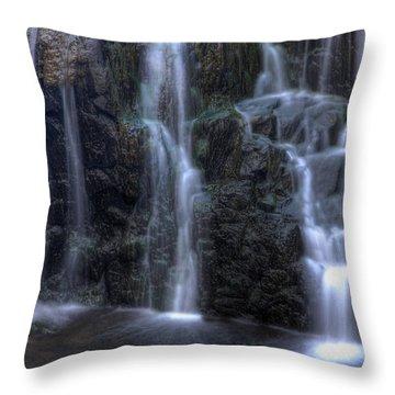 Silk  Throw Pillow by Jeff Bord