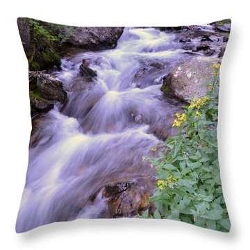 Silky Stream Throw Pillow by Zawhaus Photography